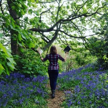 walking in bluebells